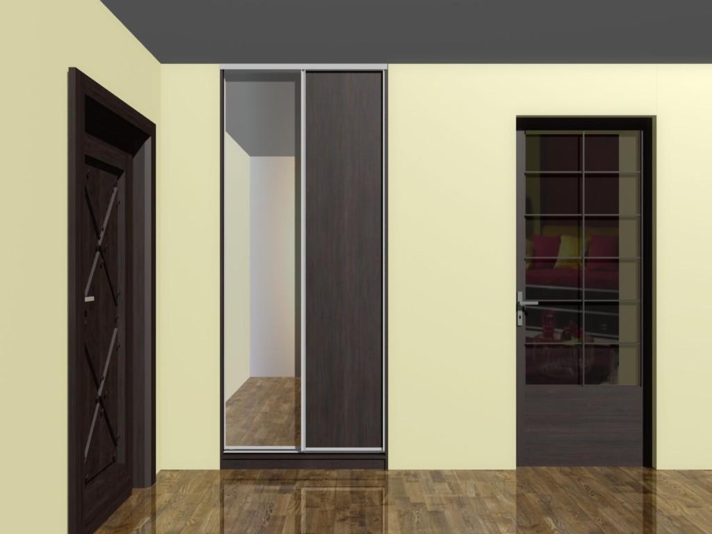 projekt szafy z drzwiami