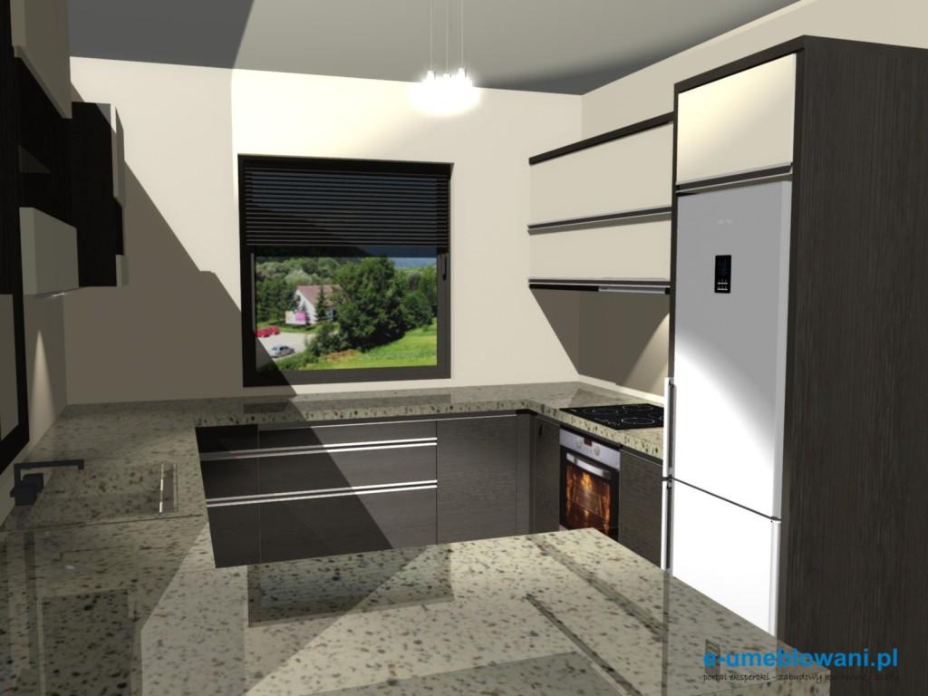 projekt kuchni 235