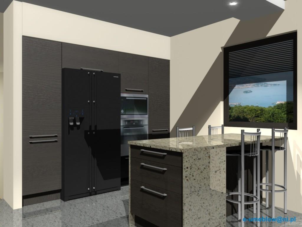 projekt kuchni z lodówką side by side