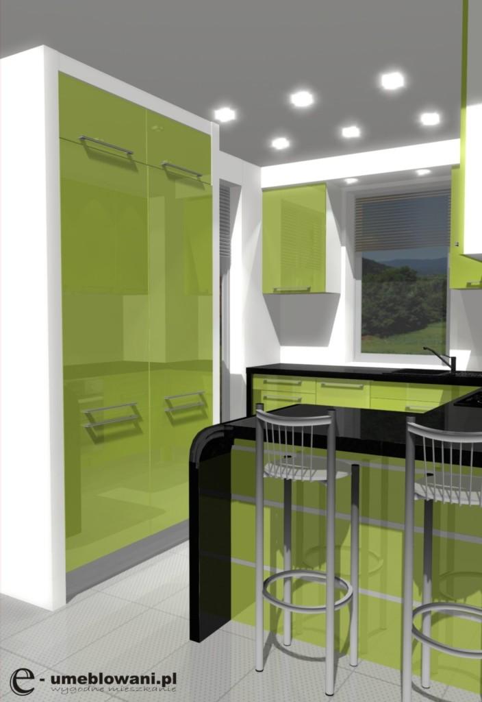 kuchnia, meble kuchenne, zielone, czarne, aranżacja małej kuchni zielonej