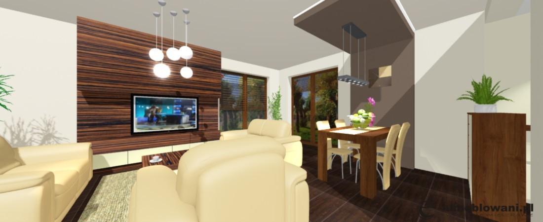 salon, projektowanie salonu, jadalnia, stół, oświetlenie, stolik kawowy, meble skórzane, meblościanka