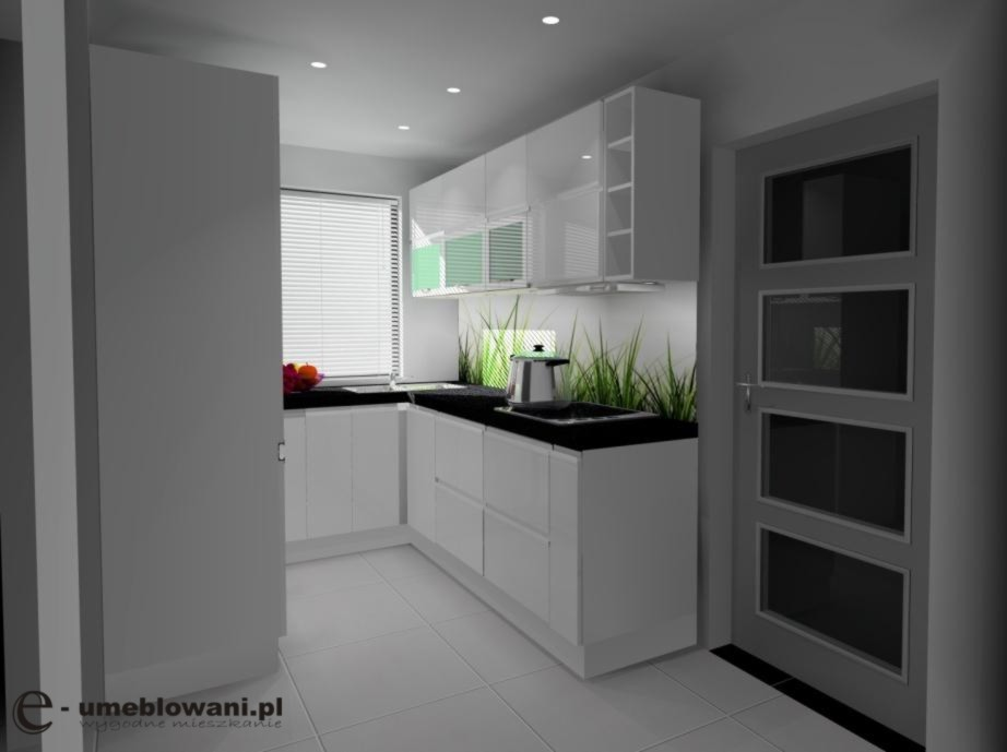 Aranżacja_projekt_kuchni_wystrój_nowoczesny_w kolorach_biały_czarny_grafika_trawa_1308141