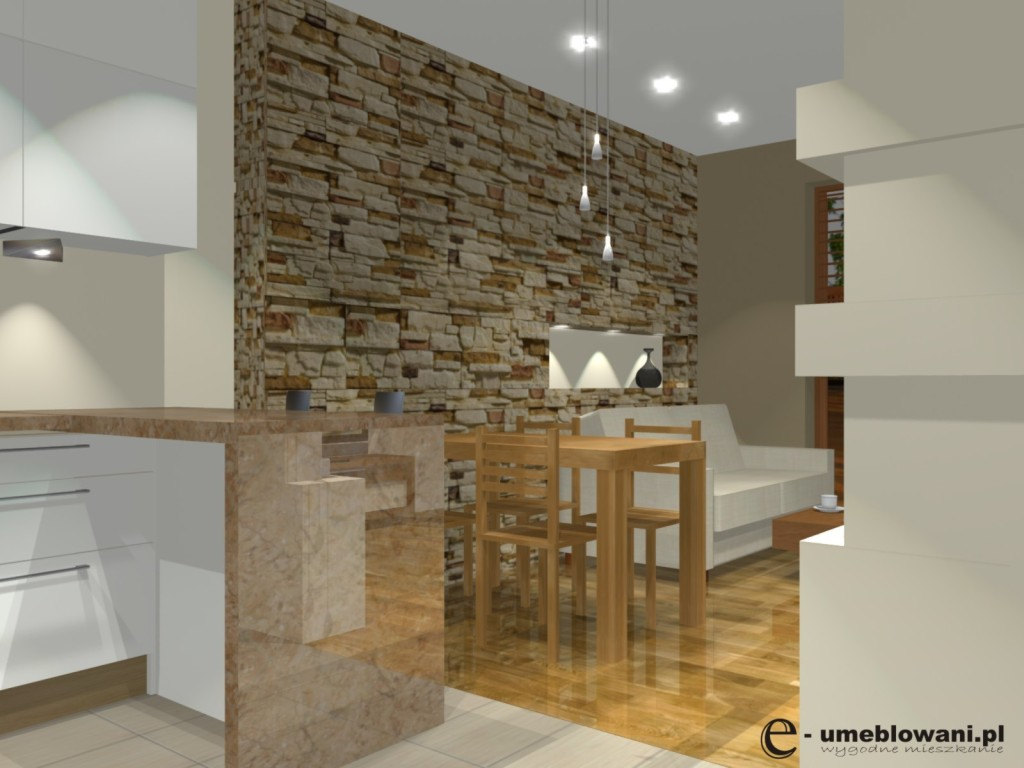 kuchnia, salon, biały, szafki kuchenne do sufitu, aranzacja kuchni z salonem z kinkierem na ścianie