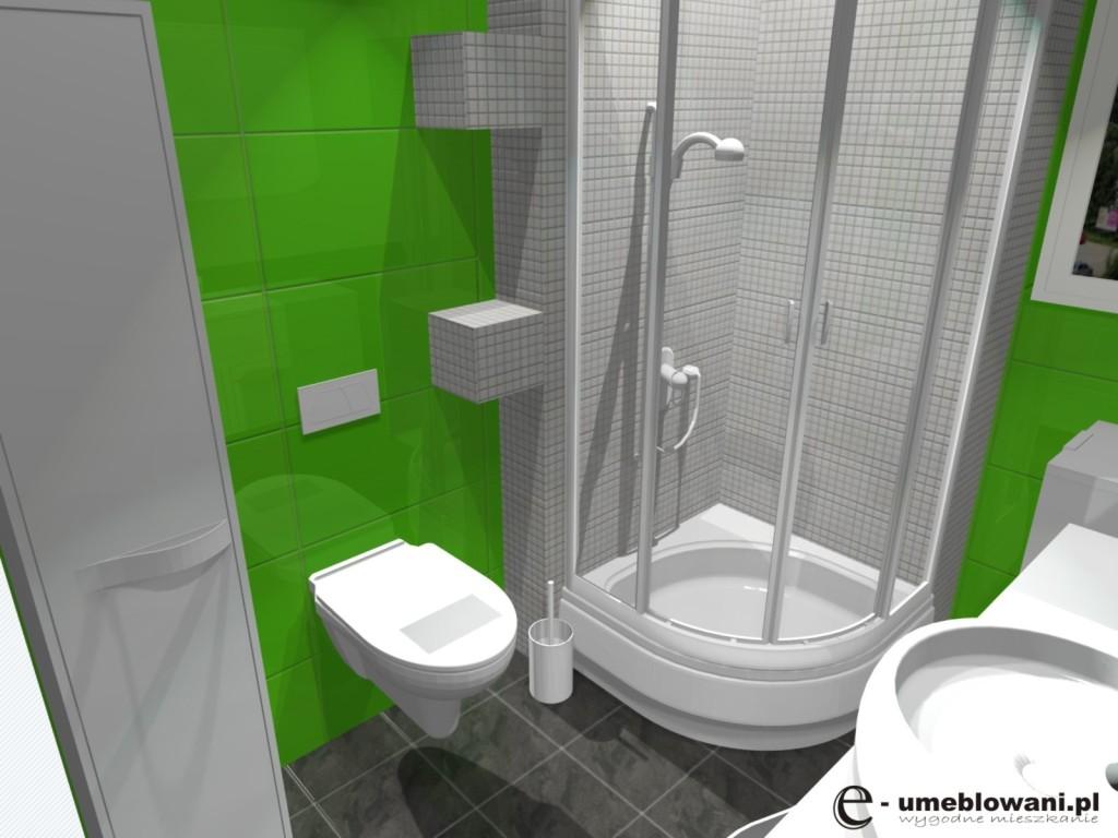 łazienka, projekt malej lazienki zielono bialej, prysznic